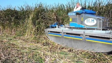 Photo of В Днепре реки и озёра будет расчищать машина-амфибия
