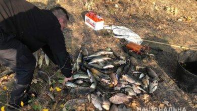 Photo of Глушили током: в Днепропетровской области мужчины порыбачили на 20 000 гривен