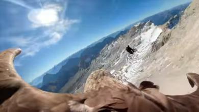 Photo of Орел записал видео, где показал таяние ледников с высоты птичьего полета