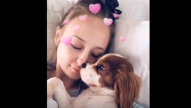 Photo of В сети появилось видео, где щенок просит хозяйку не делать селфи
