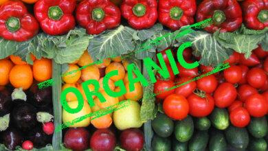 Photo of В Украине создают онлайн-ресурс проверки подлинности органических продуктов